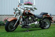 photo de HARLEY DAVIDSON FLSTF FAT BOY 1584 occasion de couleur noir en vente à Bazicourt